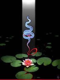 kundalini-snake2
